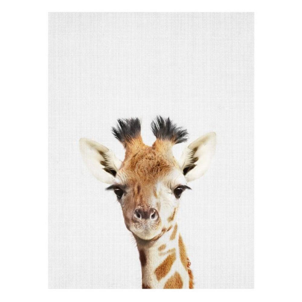 Plakát Blue-Shaker Baby Animals Giraffe, 30 x 40 cm