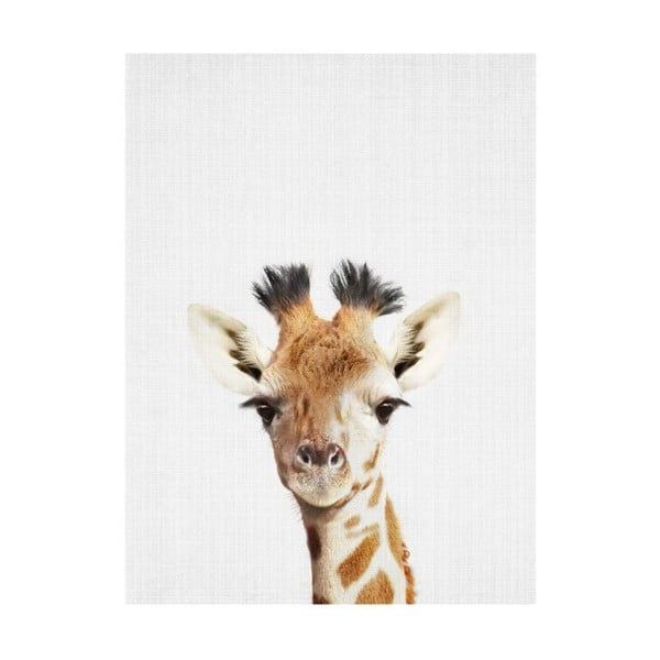 Baby Animals Giraffe poszter, 30 x 40 cm - Blue-Shaker
