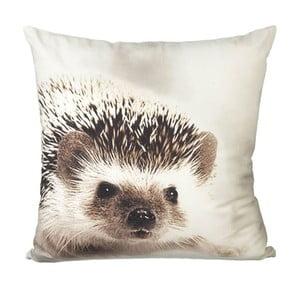 Polštář s výplní Hedgehog White/Brown, 45x45 cm