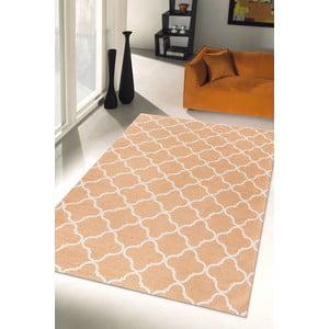 Vysoce odolný kuchyňský koberec Webtappeti Trellis Apricot,80x130cm