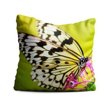 Pernă Oyo home Butterfly, 40x40cm, verde de la Oyo home