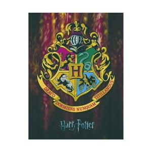 Obraz Pyramid International Harry Potter Hogwarts Crest, 60 x 80 cm