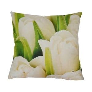 Polštář White Tulips, 42x42 cm