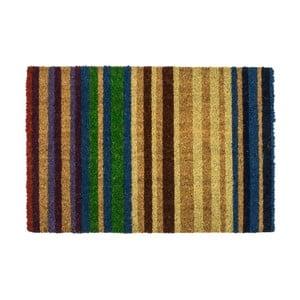 Rohožka Entryways Rainbow, 40 x 60 cm