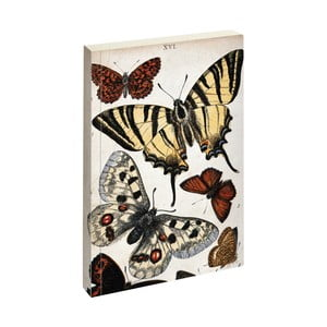 Agendă Jay Biologica Butterfly