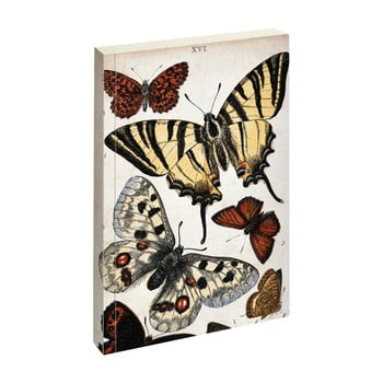 Agendă Jay Biologica Butterfly de la Jay