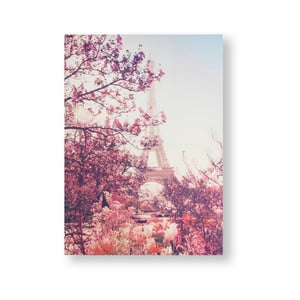 Obraz Graham & Brown Paris In Bloom, 50 x 70 cm