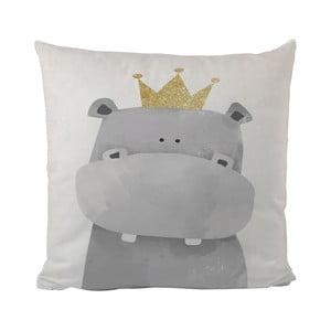 Polštář Butter Kings King Rhino