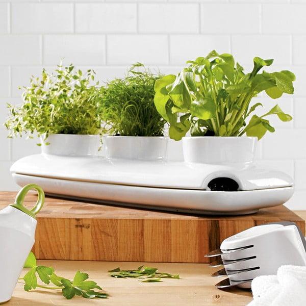 Ghiveci pentru plante Sagaform Trio Herb