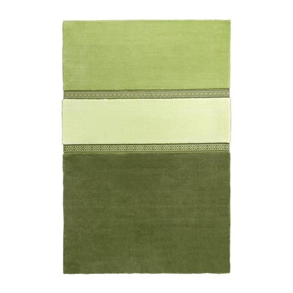 Zelený koberec EMKO Lietuva, 170x260cm