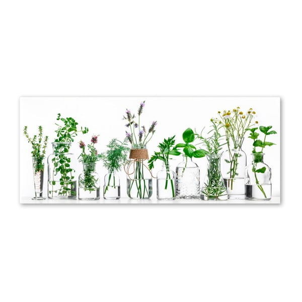Obraz Styler Glasspik Herbs, 30 × 80 cm