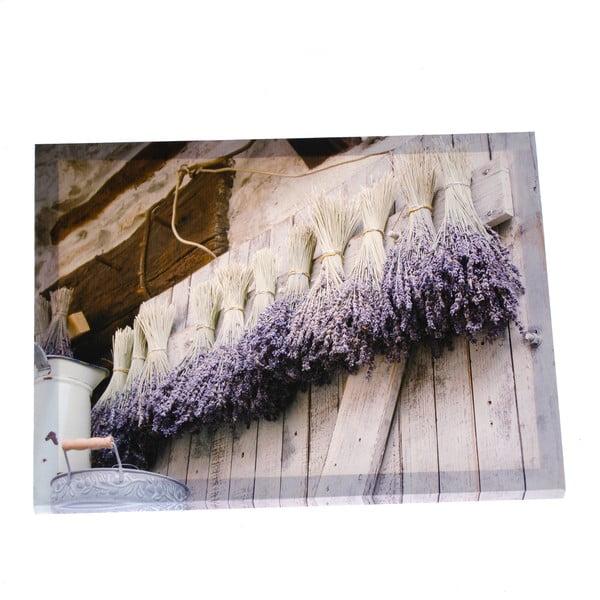 Nástěnný obraz na plátně Dakls Dry Levander, 56x46cm