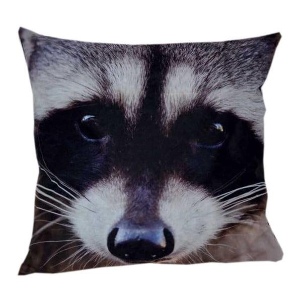 Polštář Animals Raccoon, 42x42 cm