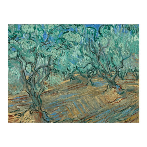 Obraz Vincenta van Gogha - Olive Grove, 50x30 cm
