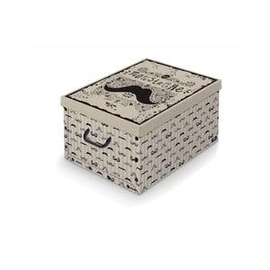 Úložný box s rukojetí Domopak Mustache, délka 50cm