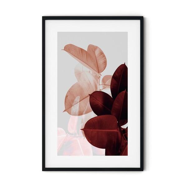 Plakat w ramie Insigne Ficus Ruby, 46x72 cm
