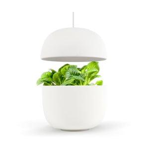 Domácí inteligentní bílá zahrádka Plantui 3 Smart Garden White