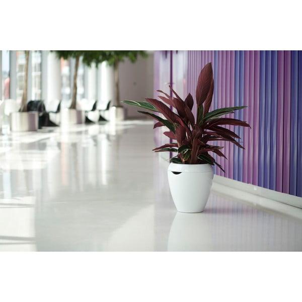 Samozavlažovací květináč Calimera, 50 cm, bílá/bílá