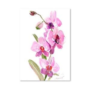 Plakát Orchids Pink