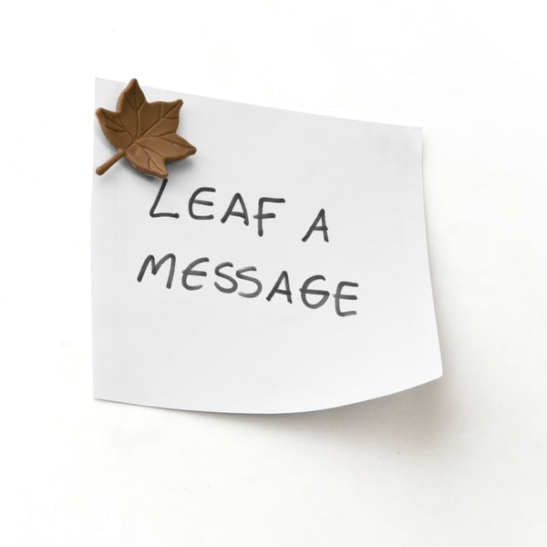 Magnety Leaf a message, 6 ks
