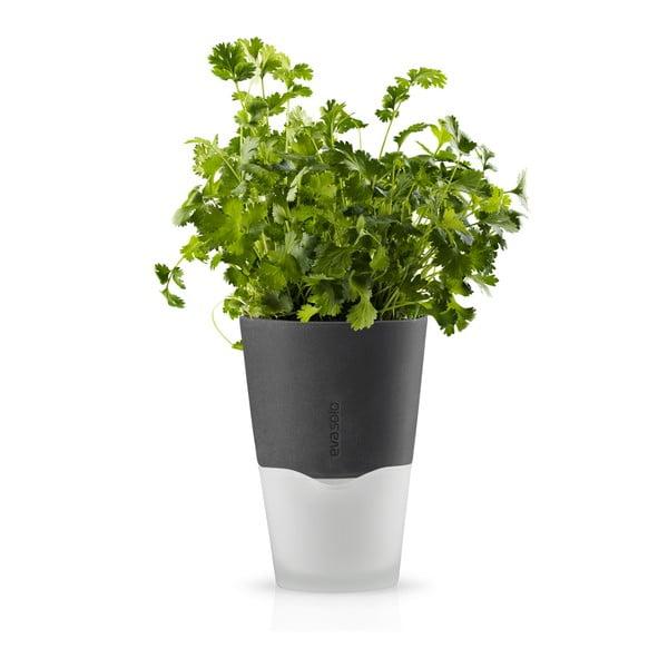 Samopodlévací květináč na bylinky Eva Solo Stone Grey, 11 cm