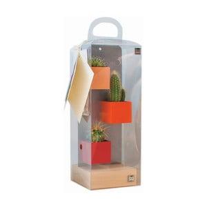 Sada 3ks malých magnetických květináčů s podstavcem a rostlinami, oranžová