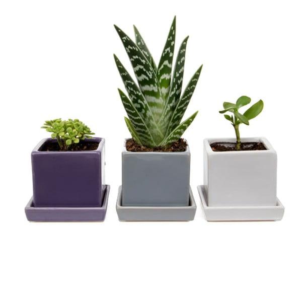 Květináče Cubes & Saucer, mix, 3 ks