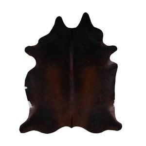 Pravá hovězí kůže Kenti, 234x206cm