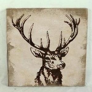 Obraz na plátně Deer, 31x31 cm
