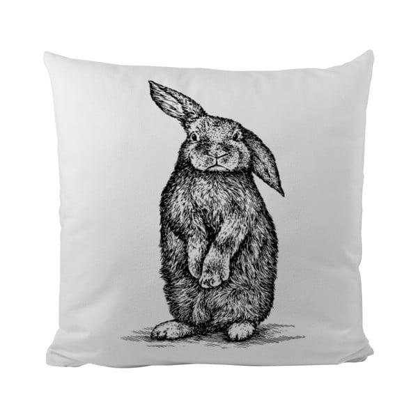 Polštář Little Rabbit, 50x50 cm