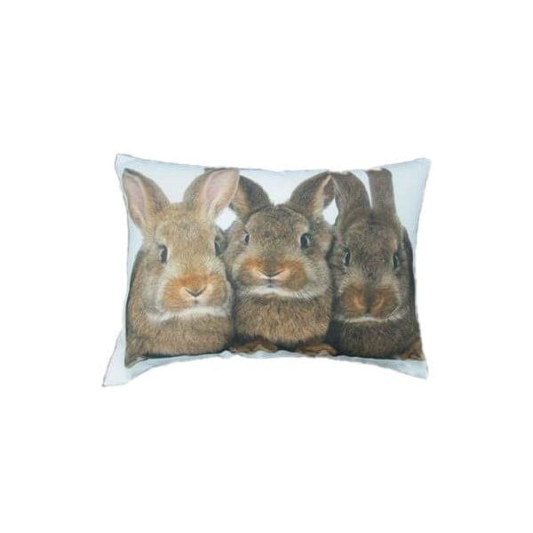 Polštář Three Brown Rabbits 50x35 cm