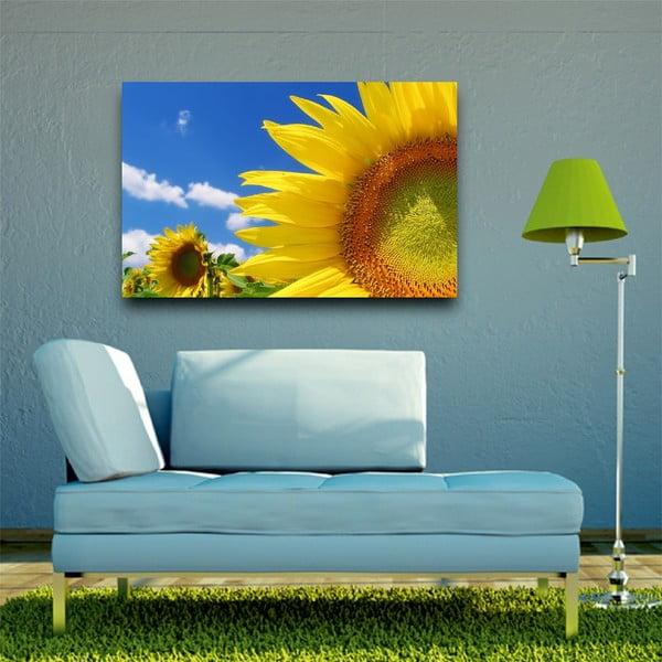 Obraz Slunečnice každý den, 45x70 cm