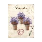 Obraz na plátně Lavender Trois