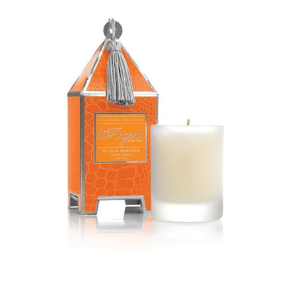 Sada 2 svíček Belgian Marigold, 15-20 hodin hoření