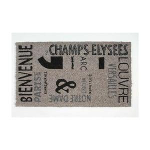Rohožka Champ Elysees, 40x70 cm