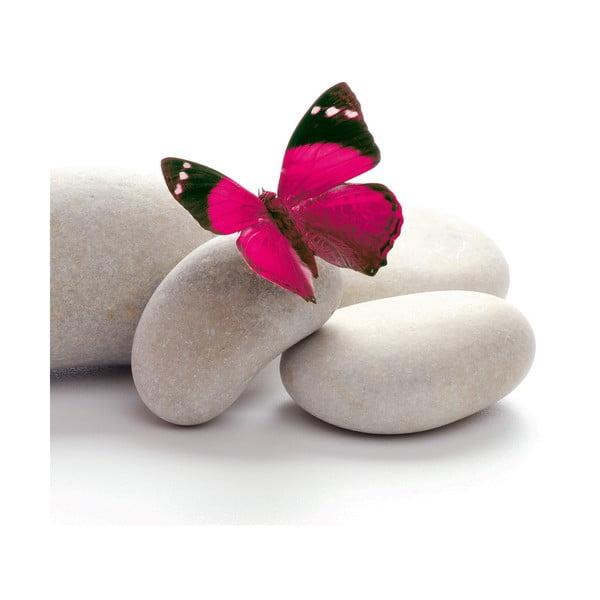 Skleněný obraz Papillon, 20x20 cm