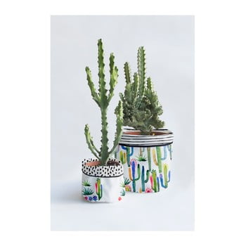 Set 2 ghivece Surdic Watercolor Cactus imagine