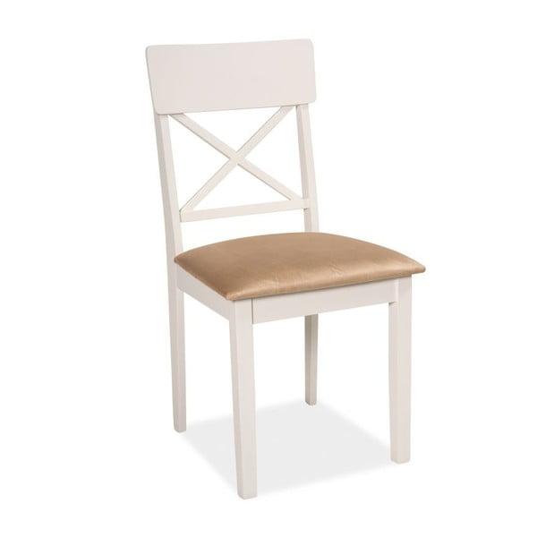 Jídelní židle Rob