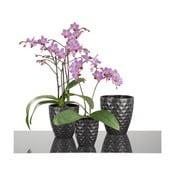 Květináč Antharzit Orchid