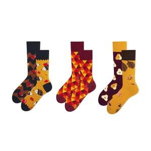 Set ponožek v dárkovém balení Many Mornings Autumn, vel.39–42