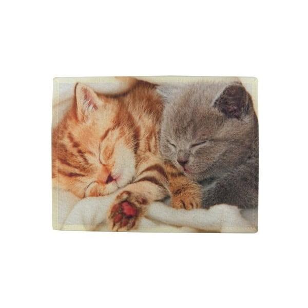 Předložka Kittens on Blanket 75x50 cm
