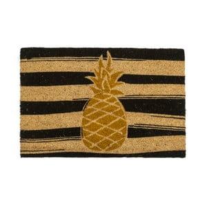 Rohožka Entryways Golden Pineapple, 40 x 60 cm