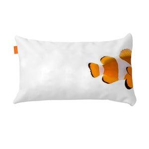 Povlak na polštář Clownfish, 50x30 cm