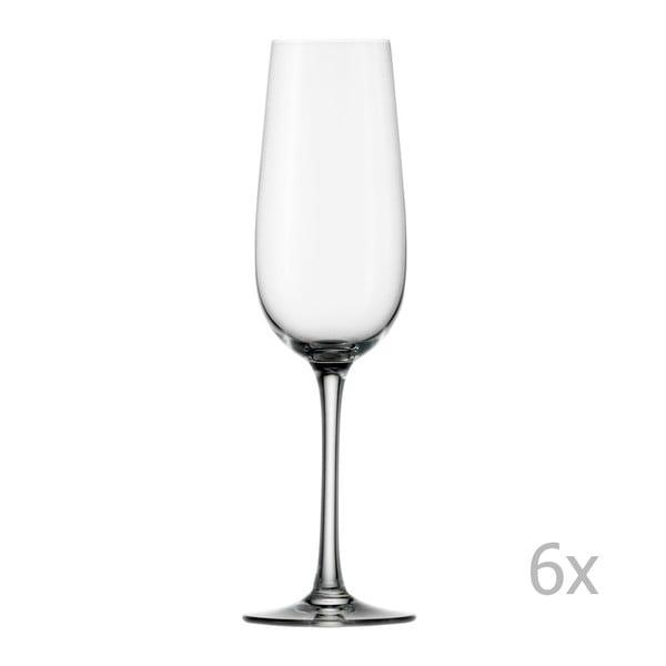 Sada 6 sklenic na šampaňské Stölzle Lausitz Weinland Flute, 200 ml