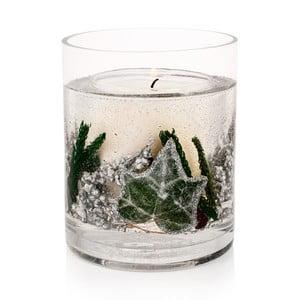 Svíčka Botanical 30 hodin hoření, bříza bělokorá