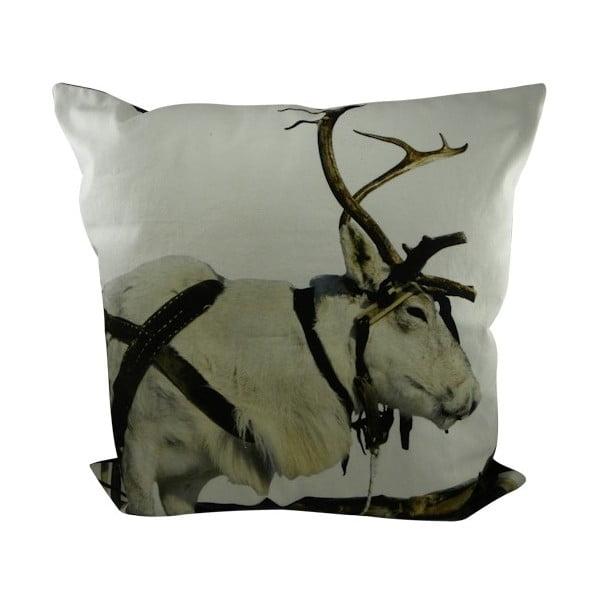 Polštář Sepia Reindeer Working 60x60 cm