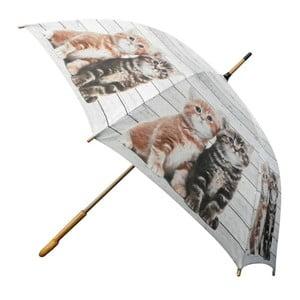 Deštník Scaffold Wood Kittens Red