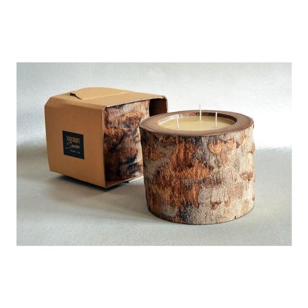 Palmová svíčka Legno Ebony s vůní medu, 100 hodin hoření