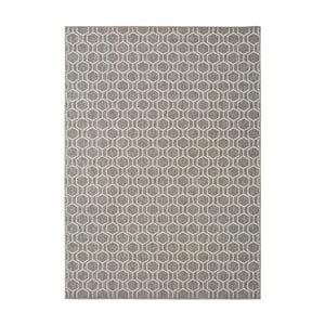 Šedý koberec vhodný i na ven Universal Clhoe, 120 x 170 cm