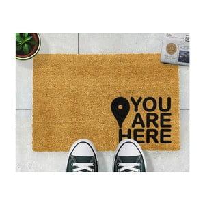 Rohožka Artsy Doormats You Are,40x60cm